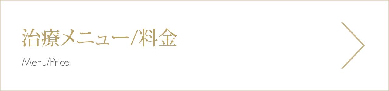 治療メニュー/料金